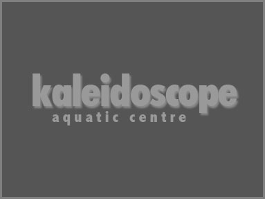 Kaleidoscope Aquatic Centre: Devon, UK