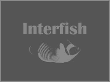 Interfish Aquatics: Yorkshire, UK